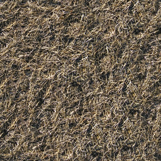 Spiral Graphics - Free Seamless Dry & Dead Plant Textures