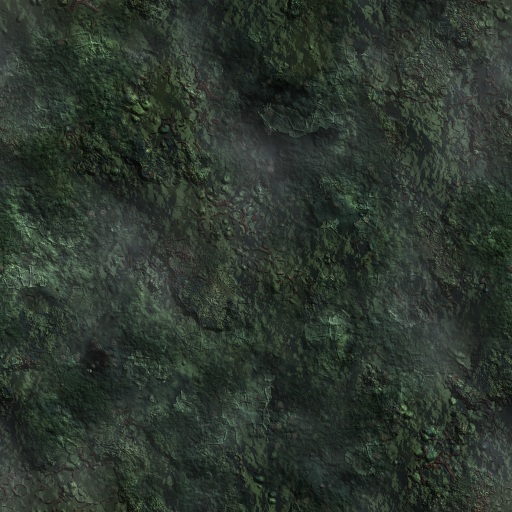 Dark Forest Ground Textures Related Keywords - Dark Forest ... Dark Forest Floor Texture